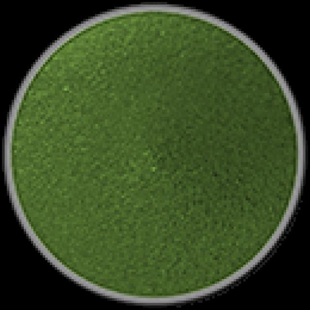 אבקת אקריל לפיסול- ירוק כהה