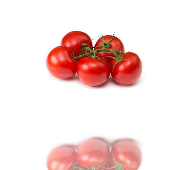 עגבניה שרי אשכול