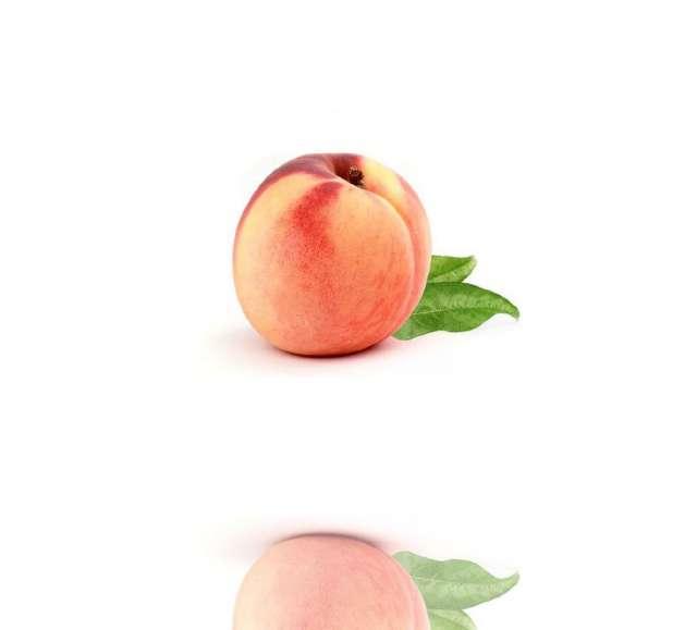 אפרסק לבן דבש