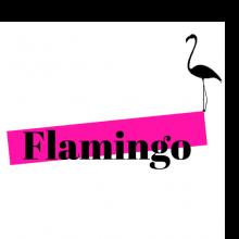 פלמינגו